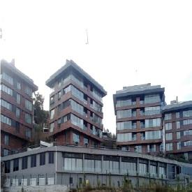 SELENIUM CITY